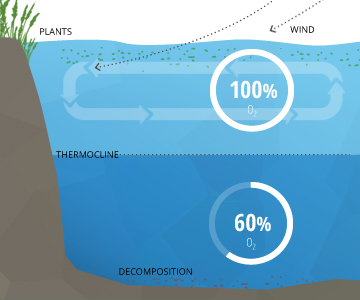 dissolved_oxygen_stratification-decomposition