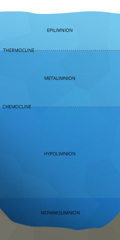 dissolved_oxygen_stratification-layers