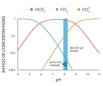 pH_ocean-carbonates