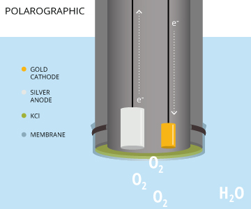 Measuring Dissolved Oxygen Environmental Measurement Systems