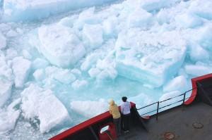 multiyear_ice_fresh