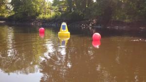 Turbidity_increases_water_temperature