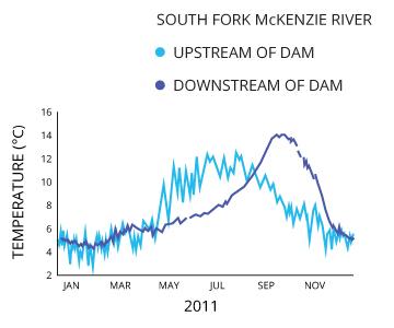 watertemp_dam