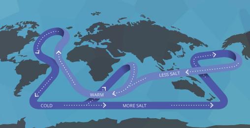 salinity_convection
