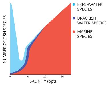 salinity_species