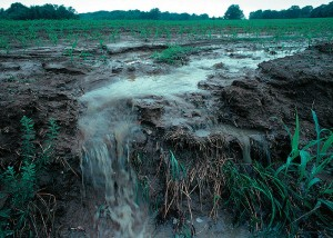 sediment_runoff_erosion_turbidity