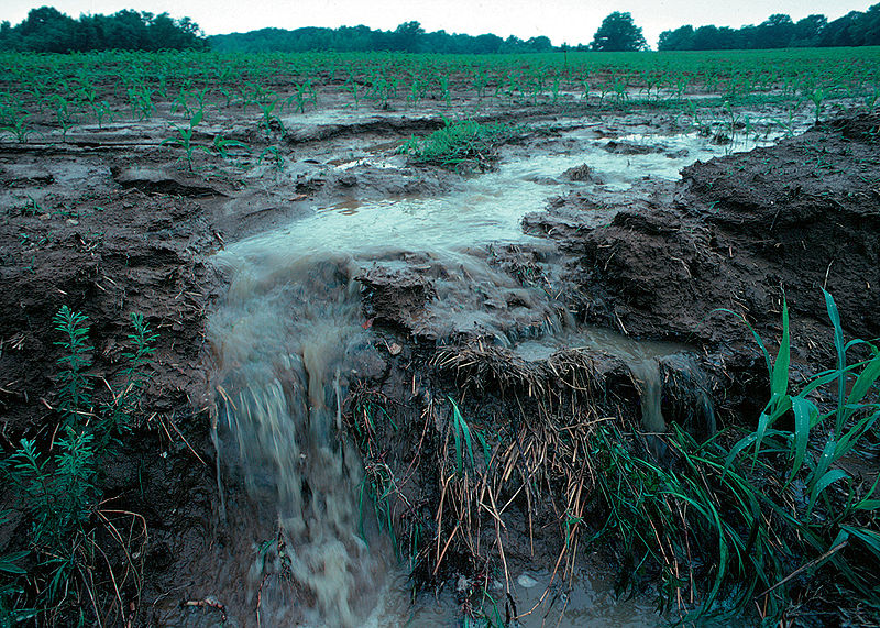 Flooding can increase conductivity when it washes salts and minerals from the soil into a water source.