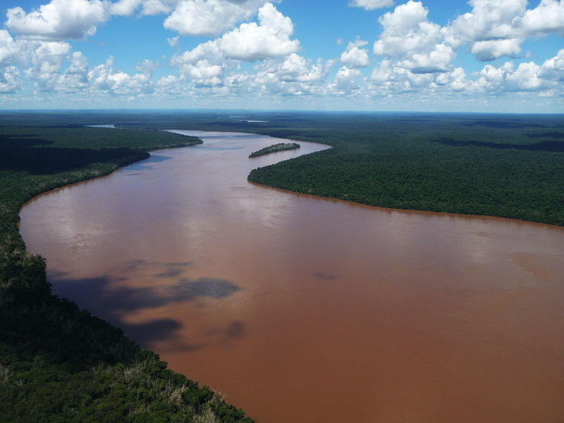 This river owes its muddy appearance to high turbidity levels.
