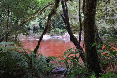 Tannins from decomposing vegetation have colored this river red.