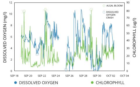 turbidity_do-chlorophyll