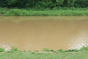 Anacostia River Turbidity