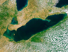 Satellite image of Lake Erie algae