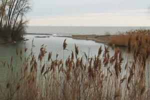 nerrs national estuarine research reserve system