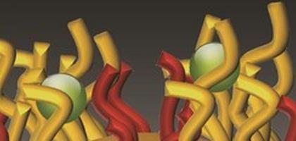 Nano-velcro rendering (Credit: Northwestern University)