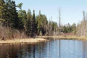 The Salmon Trout River in Michigan's Upper Peninsula is among the streams environmental groups are concerned could be affected by the Rio Tinto mine (Credit: Save the Wild UP, via Flickr)