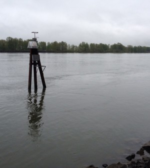The Center for Coastal Margin Observation and Prediction's Land/Ocean Biogeochemical Observatory sensor platform in the Columbia River (Credit: Michelle Maier)