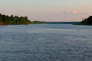 The Ogeechee River near Savannah, Ga. (Credit: Karol M, via Wikimedia Commons)