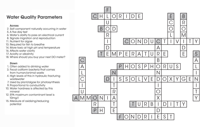Environmental Monitor Crossword Puzzles