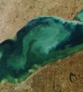 Satellite image showing stirred-up suspended sediment and algae in Lake Erie (Credit: NASA)
