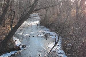 Shingle Creek (Credit: Ed Kohler, via Flickr)