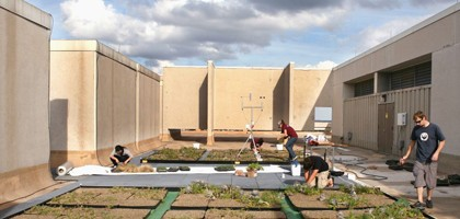Students installed a green roof on Langford A. (Credit: Texas A&M)