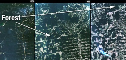 This natural-color Landsat 5 time series shows the progression of deforestation in Rondonia, Brazil, from 1986 to 2006. (Credit: NASA/USGS)