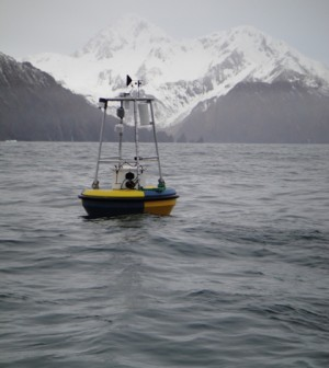 A buoy in a monitoring network for ocean acidification near Alaska (Credit: NOAA)