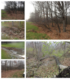 A selection of project sites courtesy (Credit: Leah Harmon/IU)