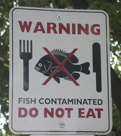 Sign warns to avoid fish consumption due to contaminated waters (Credit: U.S. EPA)