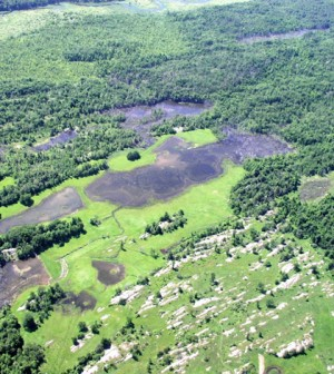 Image: Aerial view of wetlands in St. Lawrence County, New York (Credit: USDA)
