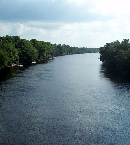 Suwannee River at Bell, Fla. (Credit: Ebyabe, via Wikimedia Commons)