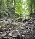 Walhonding River tributary (Credit: Ohio Environmental Protection Agency)