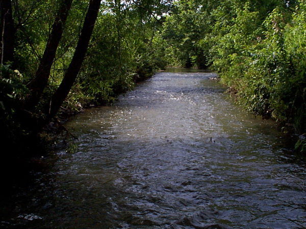 East Fork Poplar Creek (Credit: Oak Ridge National Laboratory)