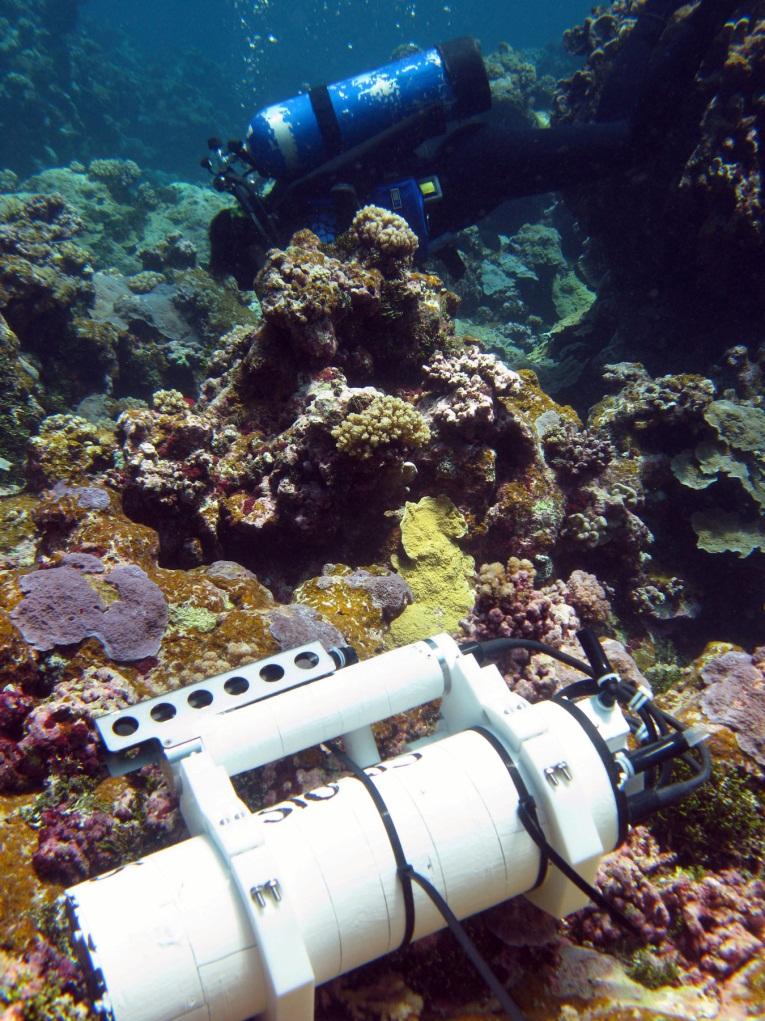 The SeapHOx sensor package on the ocean floor (Credit: Todd Martz)