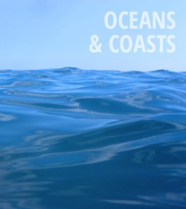 Oceans & Coasts News