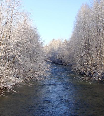 Coquitlam River (Credit: radiobread, via Flickr)