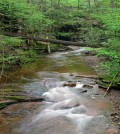 A new Pennsylvania streamflow estimating tool gives 40 years of daily data for ungauged streams.