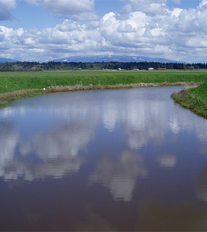 Indian Slough in western Washington (Credit: State of Washington Department of Ecology)