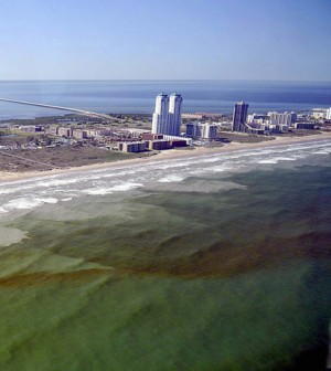 Red tide bloom off the coast of Texas (Credit: Chase Fountain, Texas Parks & Wildlife)
