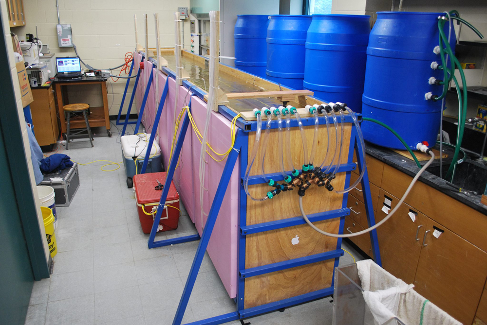 The model river, or flume, lets researchers control simulated groundwater discharge to flowing water (Credit: University at Buffalo)