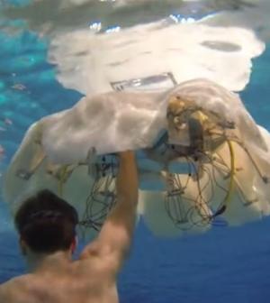 Robotic jellyfish (Credit: Virginia Tech)