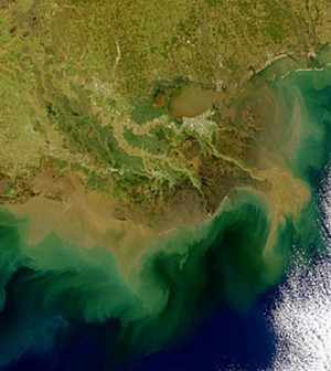 Image: In 2011, 6,800 square miles of dead zone occupied the Gulf of Mexico (Credit: NASA)