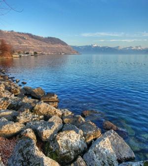 Lake Geneva at Cully, Switzerland (Credit: Carolina Ödman, via Wikimedia Commons)