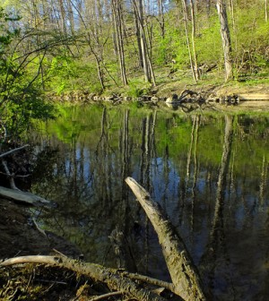 Little Lehigh Creek (Credit: Nicholas A. Tonelli, via Flickr)