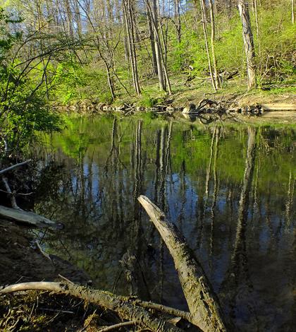 Little Lehigh Creek (Credit: Nicholas A. Tonelli, via Flickr)