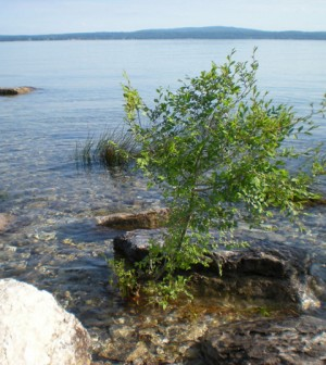 Little Traverse Bay is among the water bodies in need of volunteer monitors (Credit: bagaball, via Flickr)