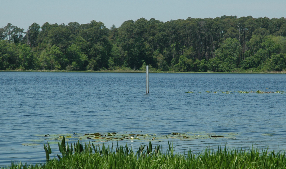 A staff gauge on Florida's Barco Lake, a future NEON aquatic site (Credit: Charlotte Roehm)