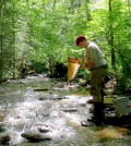 Anthony Timpano samples stream macroinvertebrates in streams with high dissolved solids concentrations (Credit: