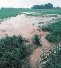 Water flows off a farm in Tennessee following a storm (Credit: Tim McCabe/NRCS)