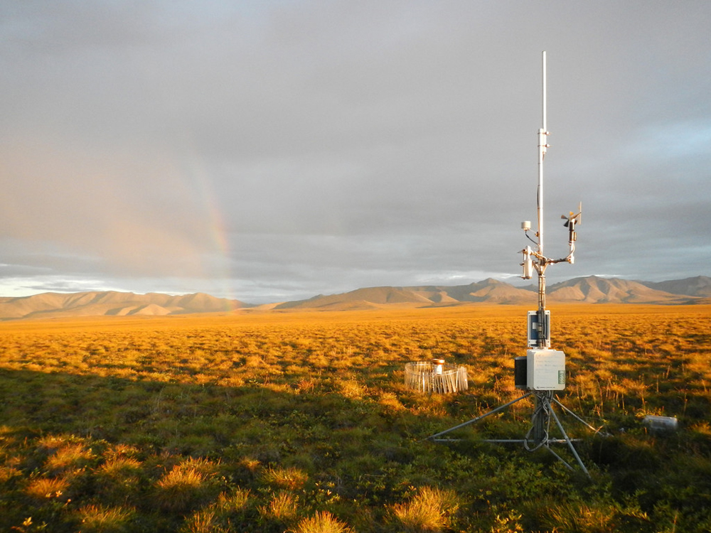 A typical weather station in the network features an RM Young wind speed and direction sensor (Credit: Frank Urban)